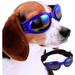 Dog Sunglasses Blue Ride Pets Decoration Dogs Plastic Glasses Party Supplies -1 Pcs (Color May Vary)